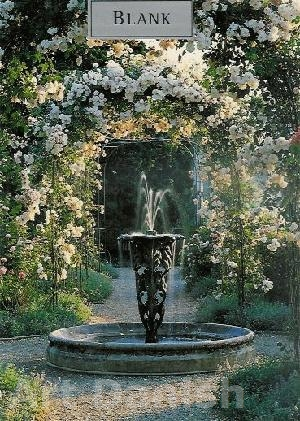 Fountain in the rose garden Tillykkekort  FlowerCard